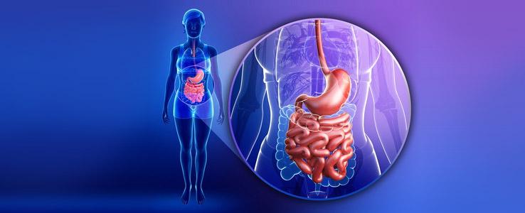 Magenschleimhautpeptide